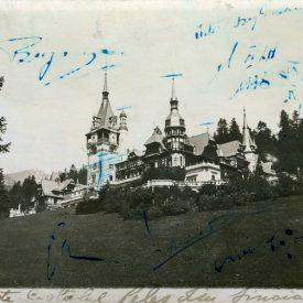 Vedere Castelul Peleș