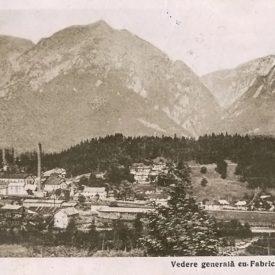 Vedere generală cu Fabrica de hârtie