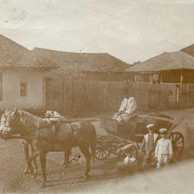 Bărbat mânând o trasură pe ulița unui sat
